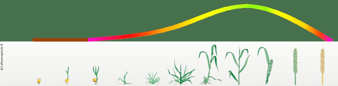 chelle-indice-de-vgtation-spotifarm-1